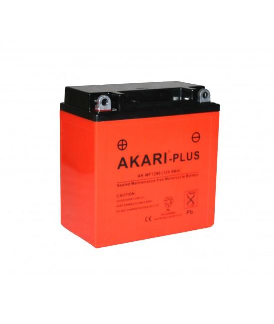 Motorcycle Batteries- AK-MF 1290